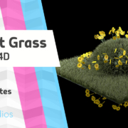 An image on a small grass scene made with the grass preset in cinema4D